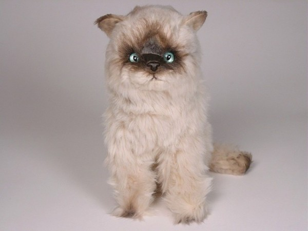 Piutre Sitzende Seal Point Katze ca. 30cm Sitting Seal Himalayan cat cm.30